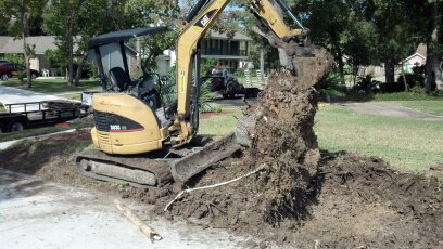 stump clearing